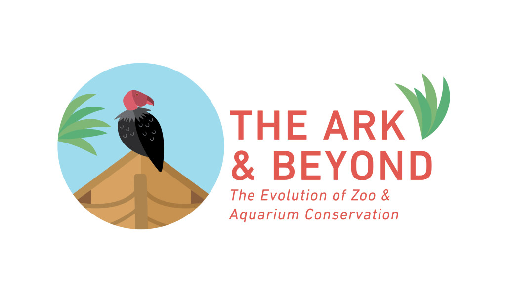 ark_and_beyond-01 copy